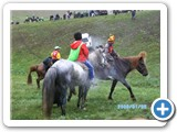 mongolian-naadam-101