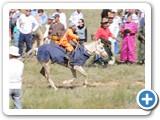 mongolian-naadam-24