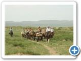 mongolian-naadam-26