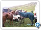 mongolian-naadam-89