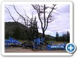 mongolian-nature-104