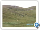 mongolian-nature-112
