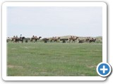 mongolian-nature-37